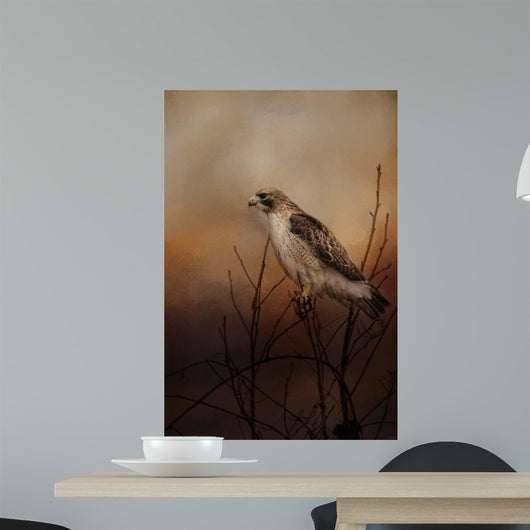 Red Tail In Wait Wall Mural