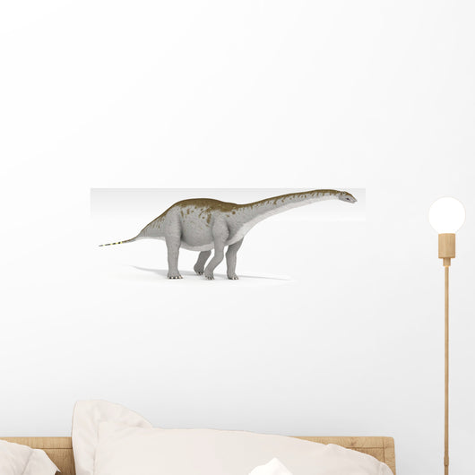 Apatosaurus Dinosaur White Wall Decal Design 3