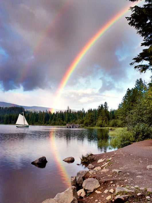 Sailing Under Rainbows, Oregon 97 - Color Wall Mural