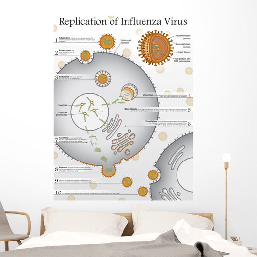 Ten Steps to Replication Wall Decal