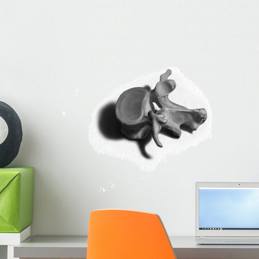 Vertebrae Illustration Wall Decal
