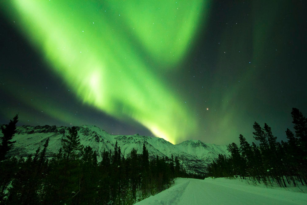 Northern Lights over Annie Wall Decal Design 1