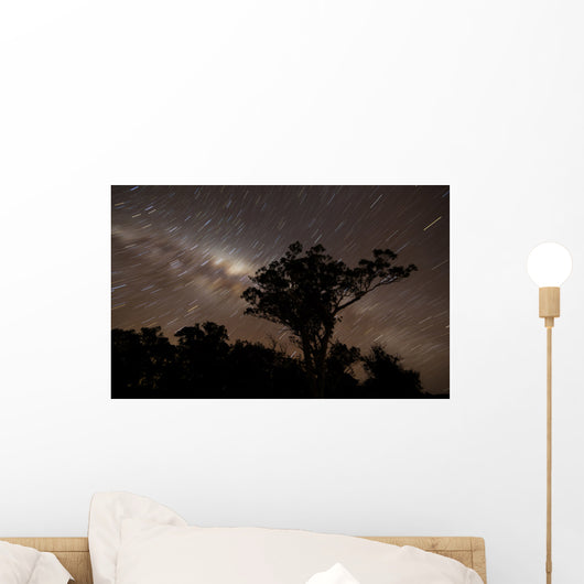 Star Trails and Milky Wall Decal