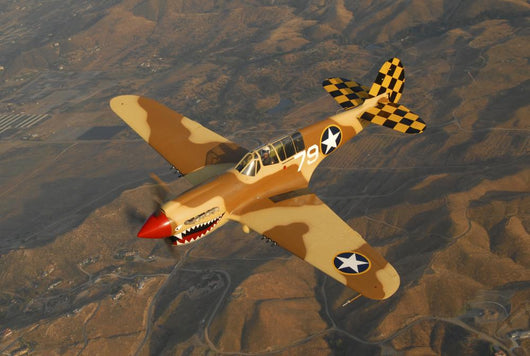 P-40 Warhawk Flying over Mountains Wall Decal