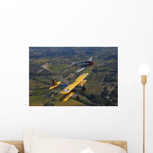 At-6 Texan and Stearman Wall Decal