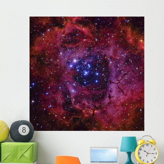 Rosette Nebula Dark Wall Decal