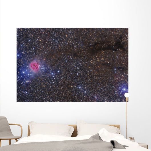 Cocoon Nebula Wall Decal
