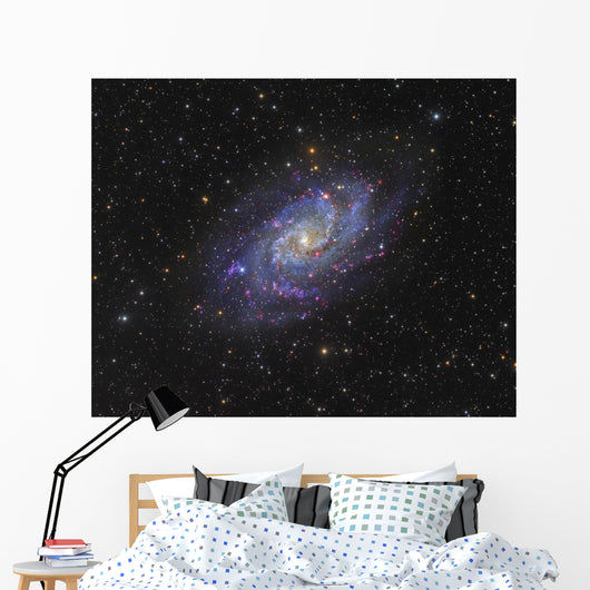 Triangulum Galaxy Distant Wall Decal
