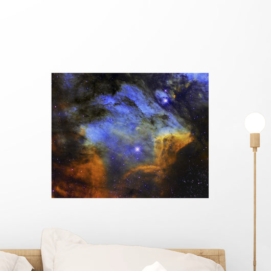 Colorful Pelican Nebula Constellation Wall Decal