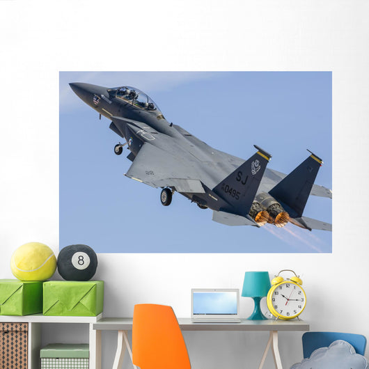 Us Air Force F-15e Wall Decal