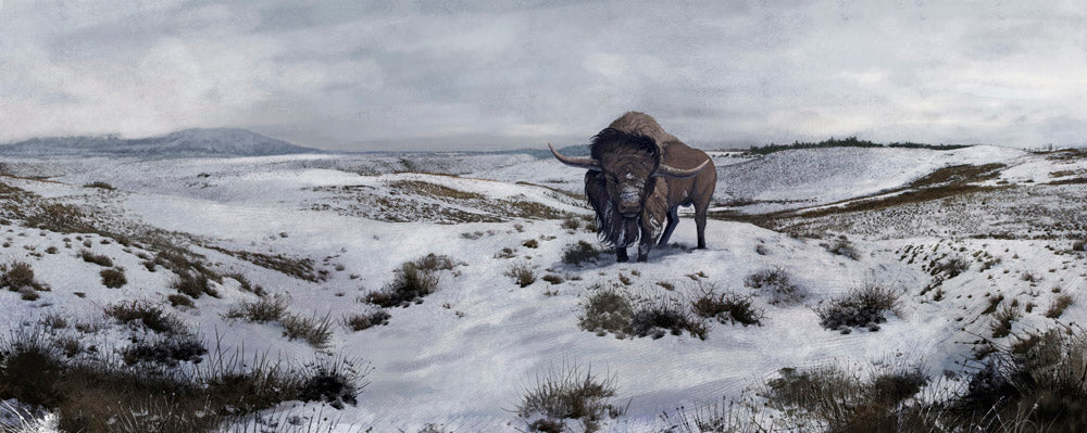 Bison Winter Landscape Wall Decal