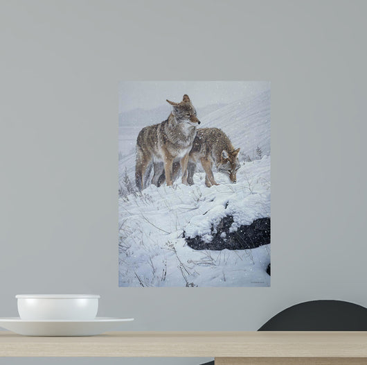Winter Storm- Coyotes Wall Mural