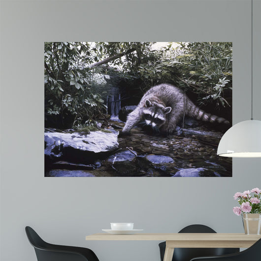 Searching The Stream- Racoon Wall Mural