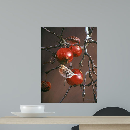 Winter Apples Wall Decal