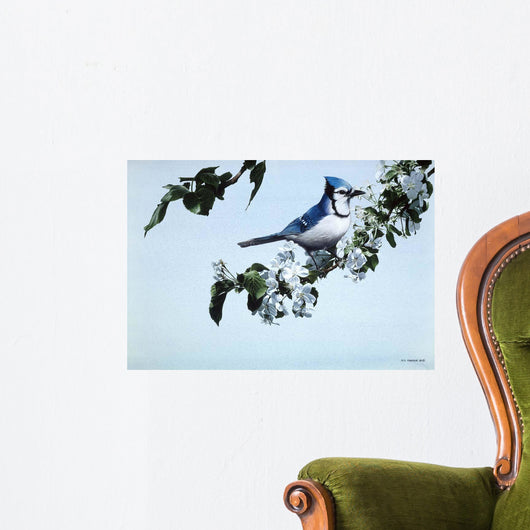 Apple Blossoms and BluJay Wall Decal