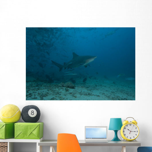 Large Bull Shark Bistro Turning Up Wall Decal