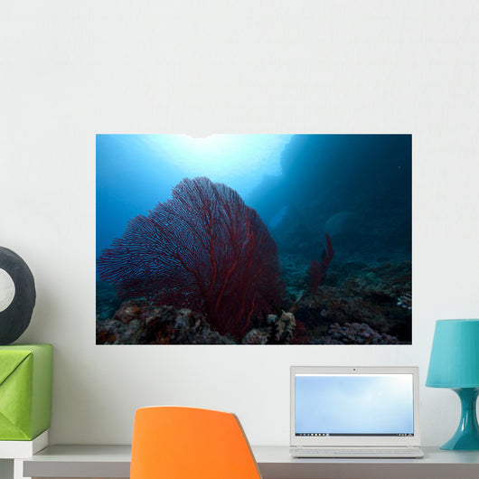 Large Red Gorgonian Sea Wide Shot Wall Decal