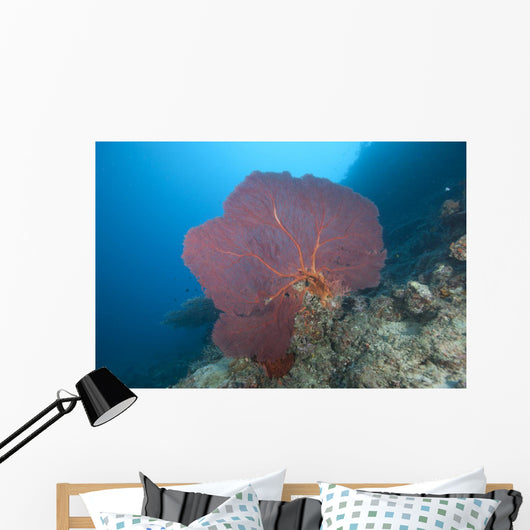 Large Red Gorgonian Sea Light Wall Decal