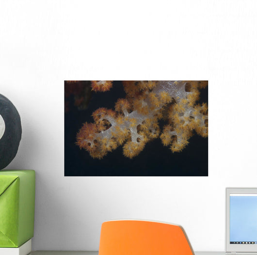 Close-up Tree Coral Fijian Yellow Wall Decal