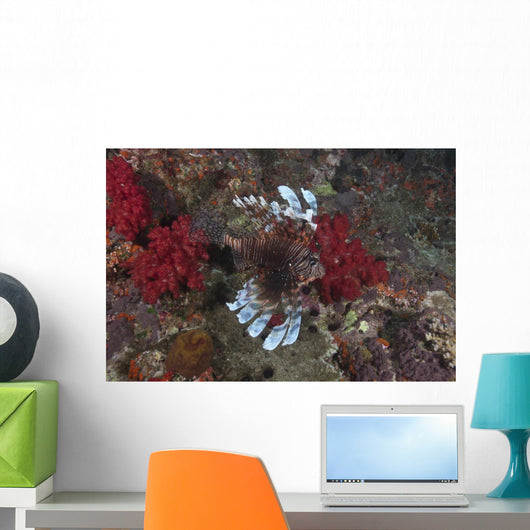 Large Common Lionfish Swimming Fins Flared Wall Decal