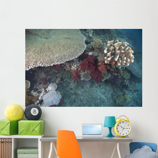 Healthy Corals Cover Reef Wall Decal