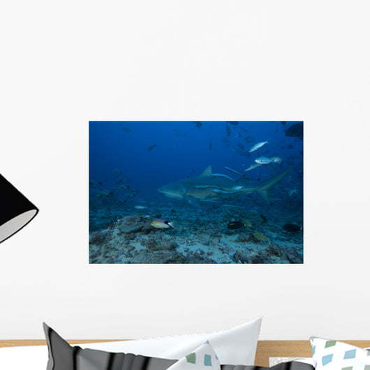 Large Bull Shark Bistro Distant Wall Decal