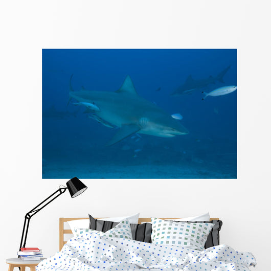 Large Bull Shark Bistro Top Right Wall Decal