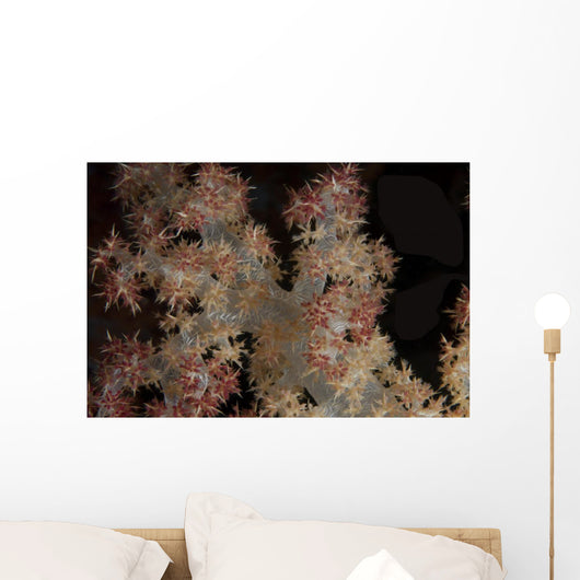 Close-up Tree Coral Fijian Wall Decal