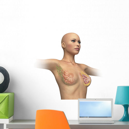 Woman Torso with Breast Wall Decal