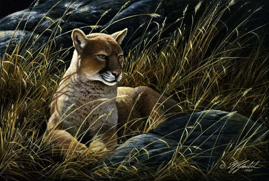Cougar In The Grass Wall Mural