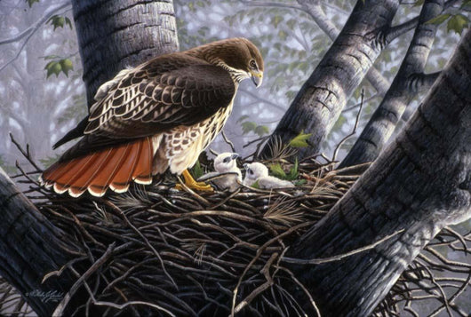 In The Nest Wall Mural