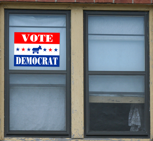 Vote Democrat Donkey Window Sticker