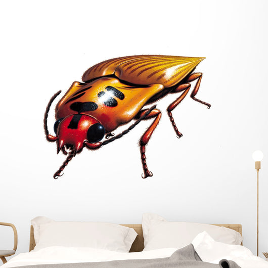 Click Beetle Clicking Wall Decal