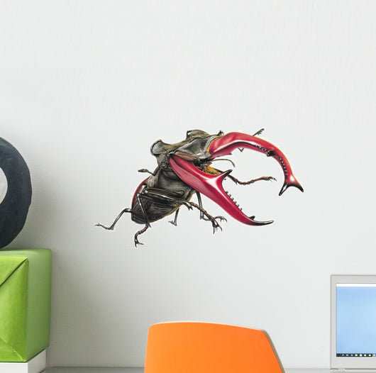 Stag Beetle Climbing Wall Decal