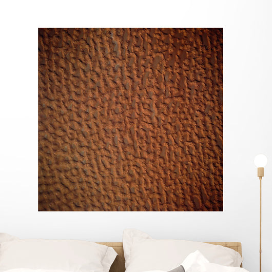 Satellite Sand Dunes Libya Wall Decal