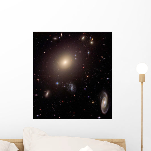 Giant Elliptical Galaxy and Wall Decal