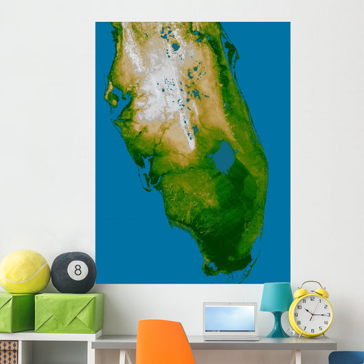 Southern Florida Wall Decal