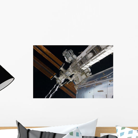 Portion International Space Station Wall Decal Design 1