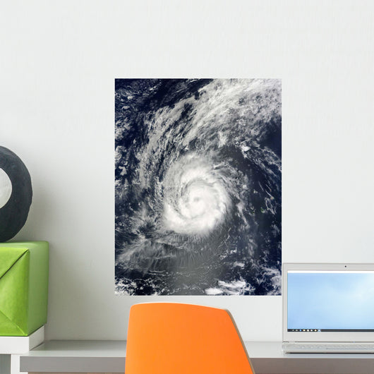 Hurricane Julia Wall Decal