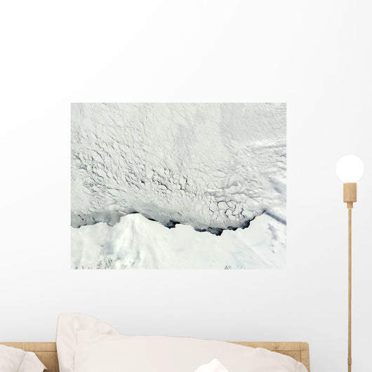 Early Spring Antarctic Wall Decal