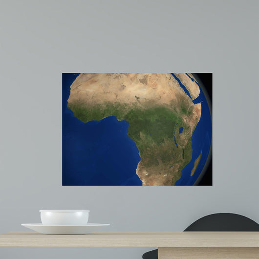 Earth Showing Landcover over Wall Decal