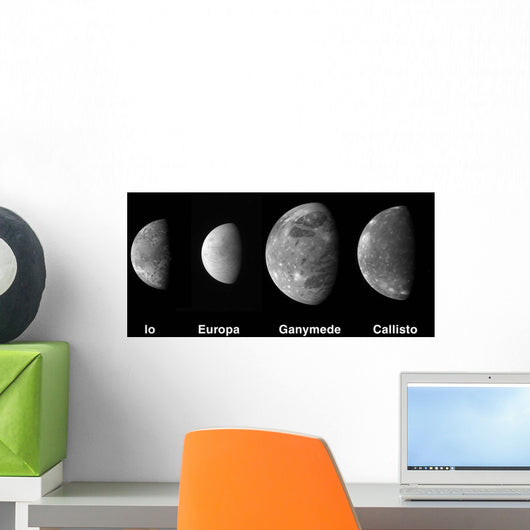 Jupiter's Galilean Moons Wall Decal