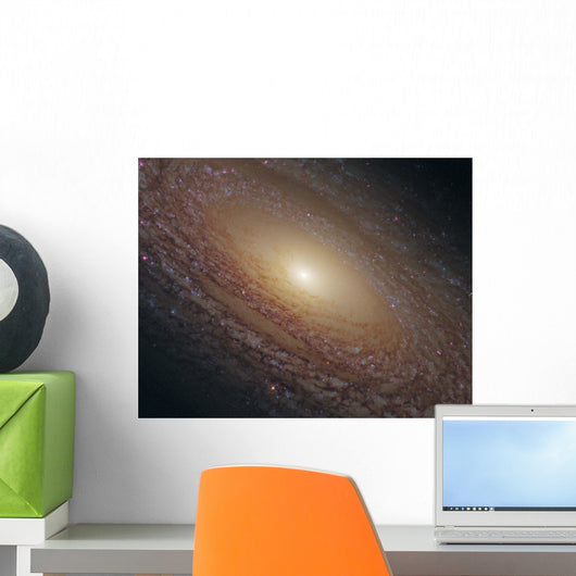 Spiral Galaxy Ngc 2841 Wall Decal
