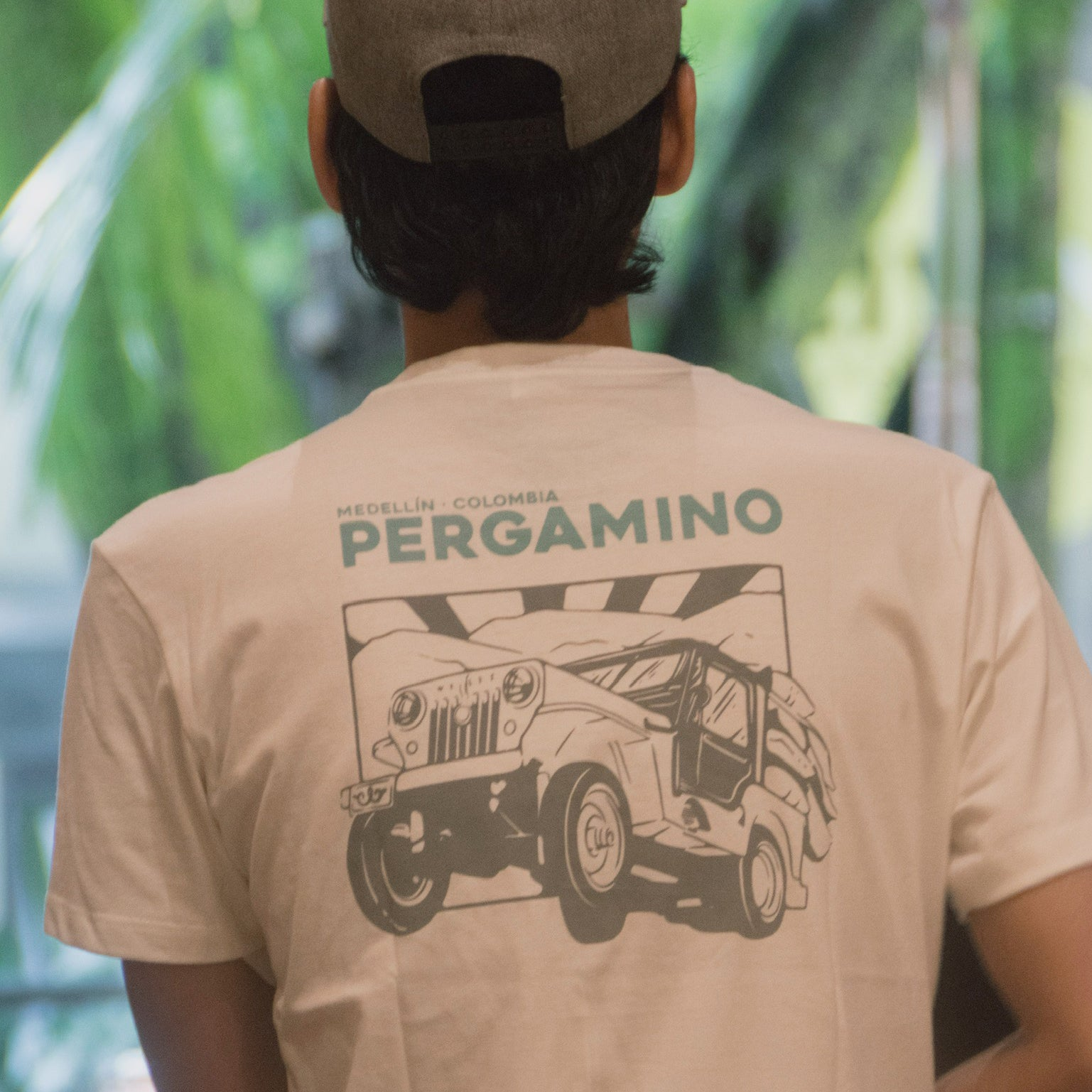 Camiseta PERGAMINO Willys