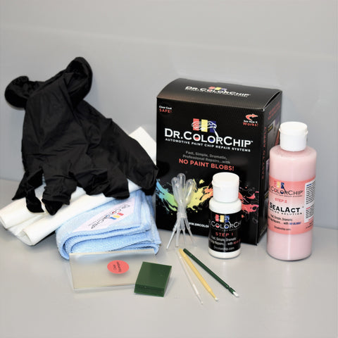 Tesla Squirt 'n Squeegee PLUS Paint Repair Kit - Dr ColorChip SNS-PLUS