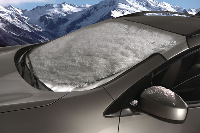 Winter Snow Shade Tesla Model S