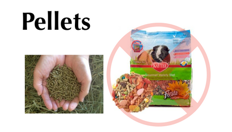 safe vs unsafe guinea pig food