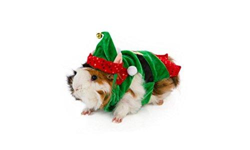 Little Helper Elf Costume - the-cavy-closet