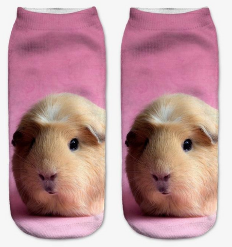 New, 3D Printed Guinea Pig Socks! - the-cavy-closet