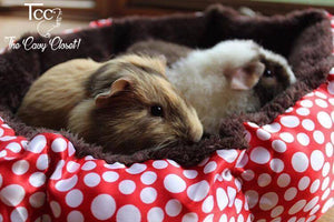 The Cozy Cavy Cup - the-cavy-closet